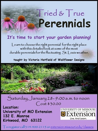Tried & True Perennials - MU Extension - January 28, 2017
