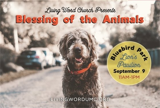 Blessing the Animals - Living Word Church - September 9, 2017