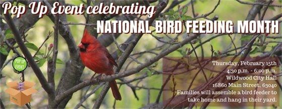 This Week - Pop Up Event - National Bird Feeding Month - DIY