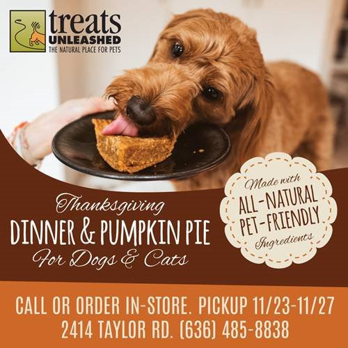 treat unleashed - Dinner and Pumpkin Pie for Dogs and Cats