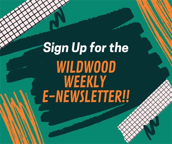 Don't Be Left Out - Subscribe to the E-Newsletter