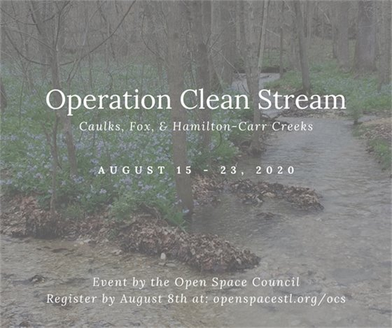 Operation Clean Stream in Wildwood - Open Space Council