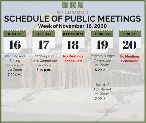 City of Wildwood - Schedule of Public Meetings for the Week of Novembrer 16, 2020
