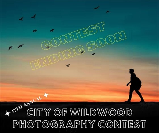 Wildwood Photography Contest - Ending Soon - July 10, 2020 - Don't Delay