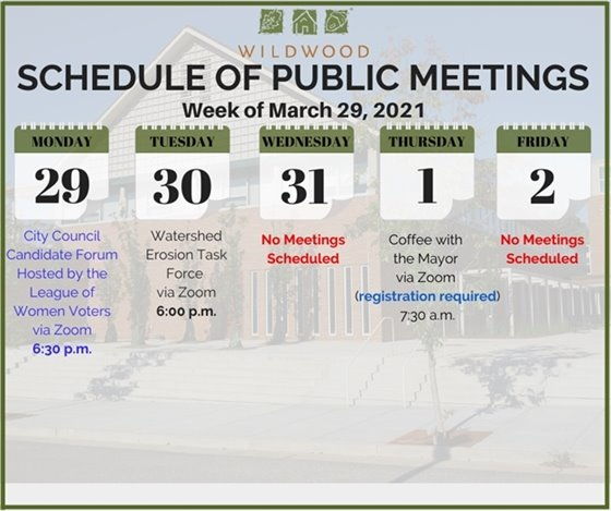 City of Wildwood - Schedule of Meetings for the Week of March 29, 2021