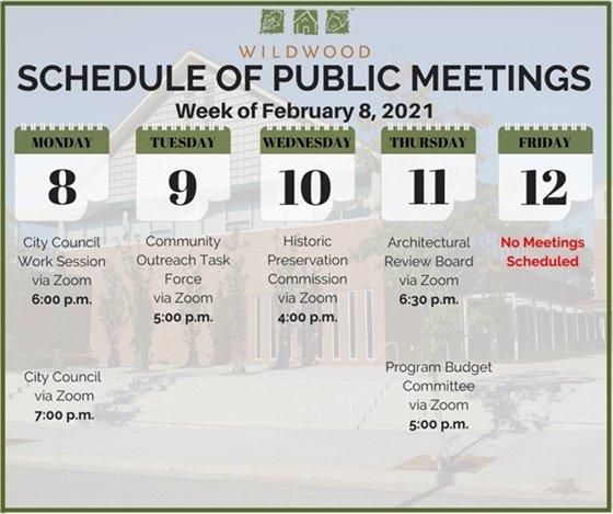 City of Wildwood - Schedule of Meetings - Week of February 8, 2021