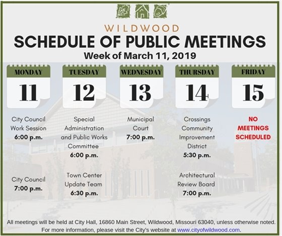 Schedule of Meetings of the City of Wildwood - Week of March 11, 2019