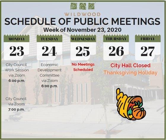 City of Wildwood - Schedule of Meetings for the Week of November 23, 2020