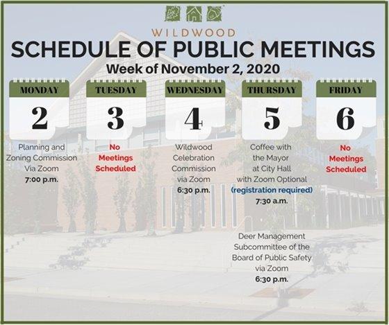 City of Wildwood - Schedule of Upcoming Meetings for the Week of November 2, 2020