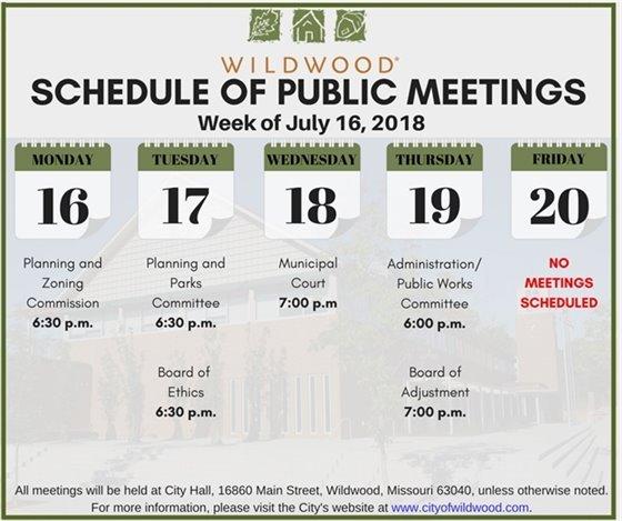 Schedule of Upcoming Meetings - City of Wildwood - Week of July 16th