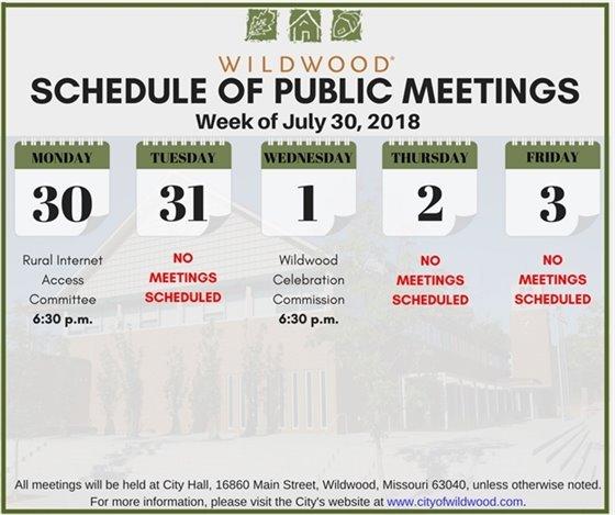 Schedule of Public Meetings - City of Wildwood - Week of July 30th