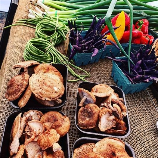 Wildwood's Farmers Market - Every Saturday, through the beginning of October