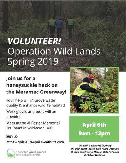 Open Space Council - Honeysuckle Eradication - Meramec Greenway - April 6, 2019 - Come Out and Volunteer