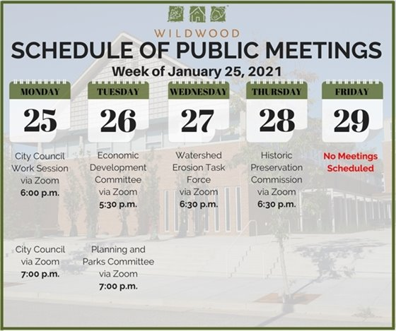 City of Wildwood - Schedule of Meetings for the Week of Janaury 26, 2021