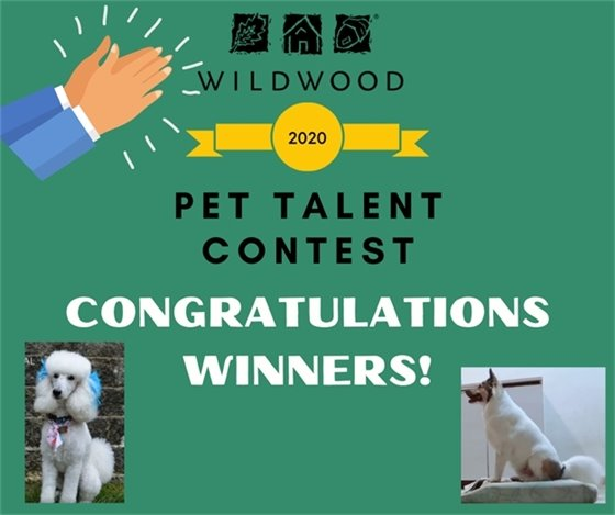 Pet Talent Contest Winners Announced