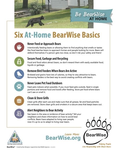 Six At-Home BearWise Basics