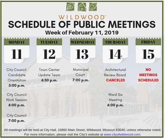 Schedule of Public Meetings for the City of Wildwood - Week of February 11, 2019