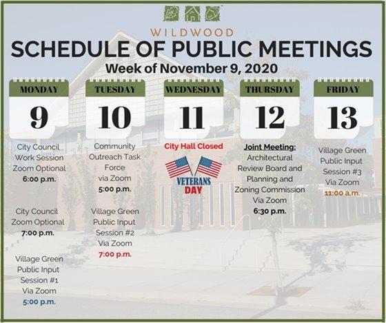 City of Wildwood - Schedule of Meetings for the Week of November 9, 2020