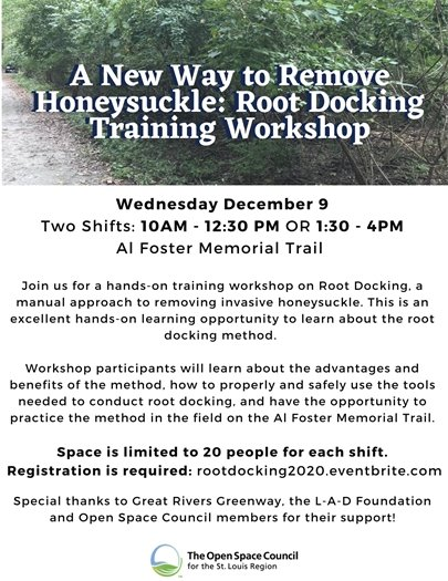 Honeysuckle - Root Docking Training Worshop - December 9, 2020