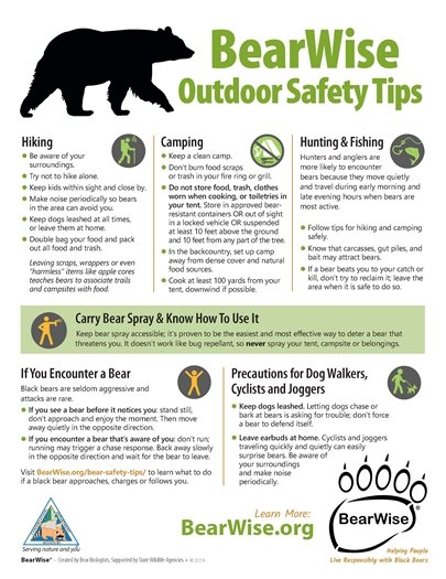 BearWise Outdoor Safety Tips