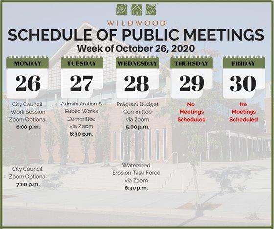 City of Wildwood - Schedule of Meetings for the Week of October 26, 2020
