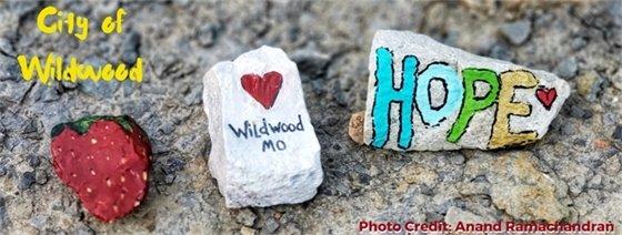 Wildwood, Missouri