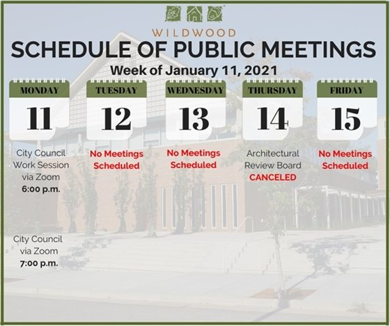 City of Wildwood - Schedule of Meetings for the Week of January 11, 2021