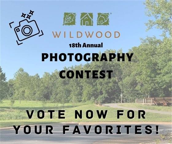 18th Annual Photography Contest - Vote Now