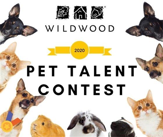 Pet Talent Contest - Coming Soon