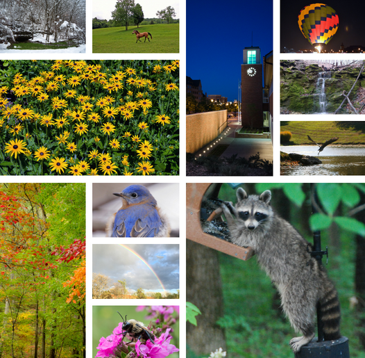 Calendar Contest open for submittal of photos from June 5th through July 11th