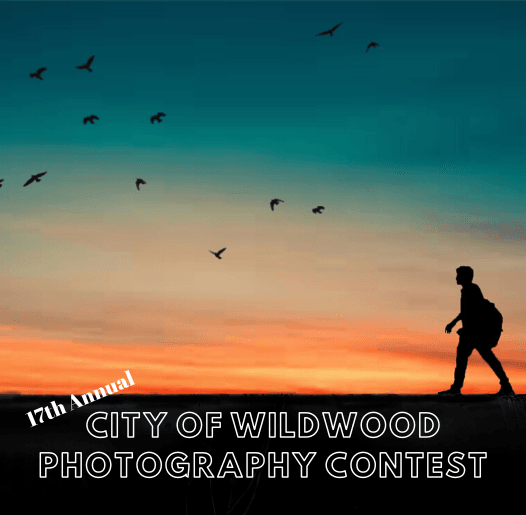 Photography Contest - spotlight