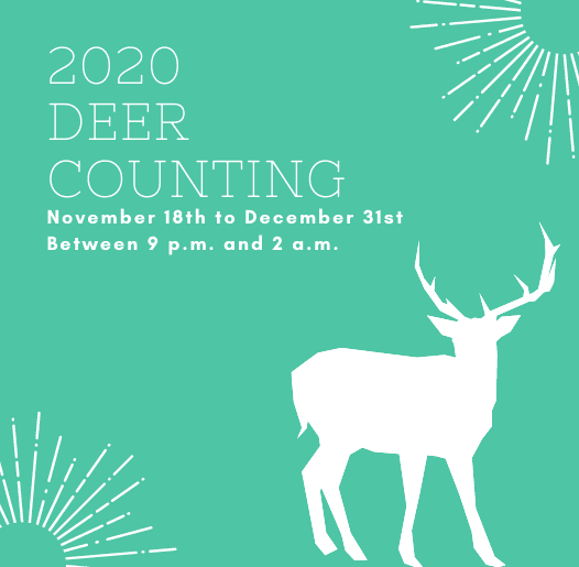 2020 Deer Counting spotlight November 18th to December 31st 9 p.m. to 2 a.m. deer silhouette